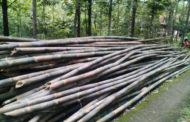 Kerajinan Dari Bambu Apus Yang Bisa Membuat Kesan Natural