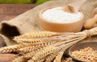 Cara Membuat Tepung Beras Sendiri dengan Mudah dan Praktis dan Manfaat Tepung Beras