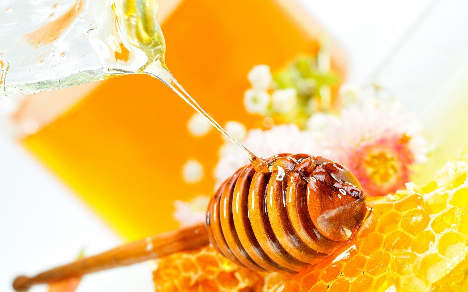 manfaat madu asli untuk kecantikan
