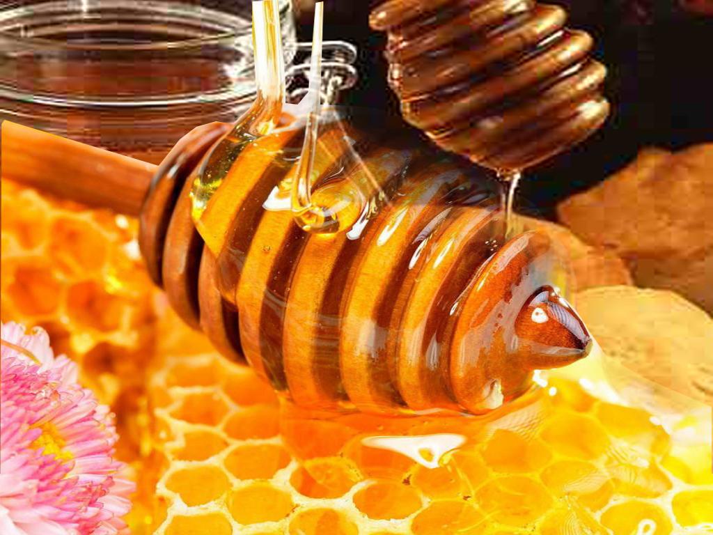 cara mendapatkan madu asli