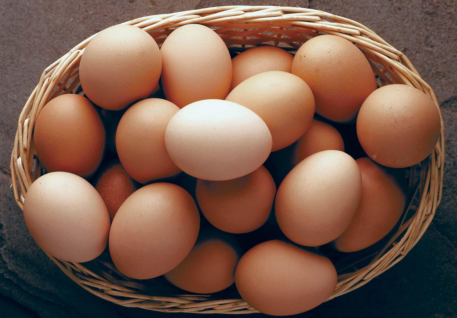 Cara Membuat Telur Gulung Jajanan SD