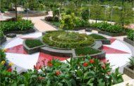 Jenis Jenis Rumput Taman Dan Pengertianya Yang Mudah Di Pahami