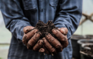 Proses Pembuatan Pupuk Kompos Dinamakan Pengomposan