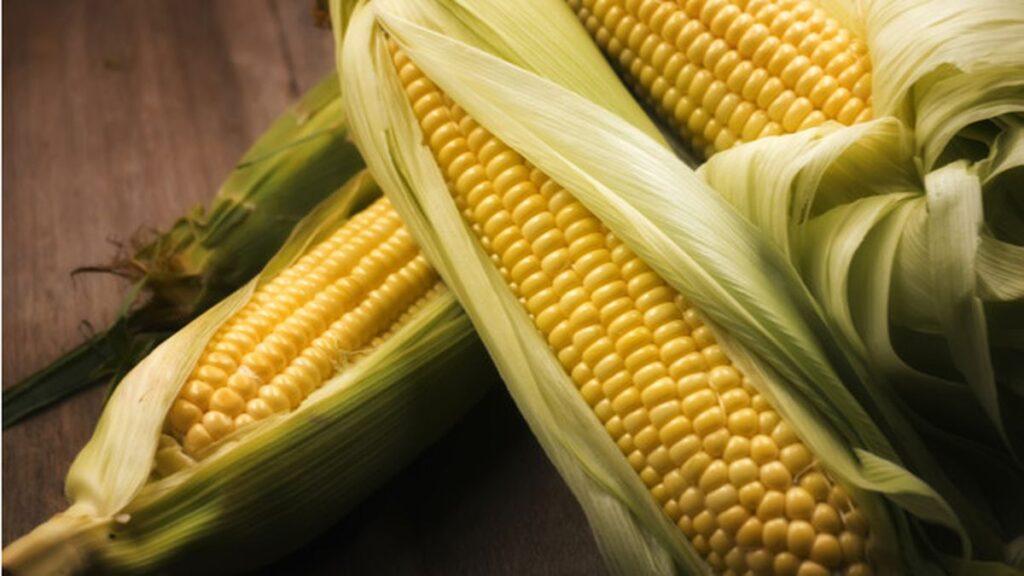 Cara Membuat Sayur Bayam Jagung Simpel Dibuat Di Rumah